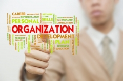 Business Organization and Goals
